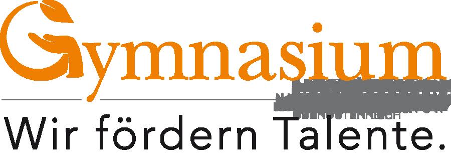 Gymnasium Niederösterreich Banner - Wir fördern Talente