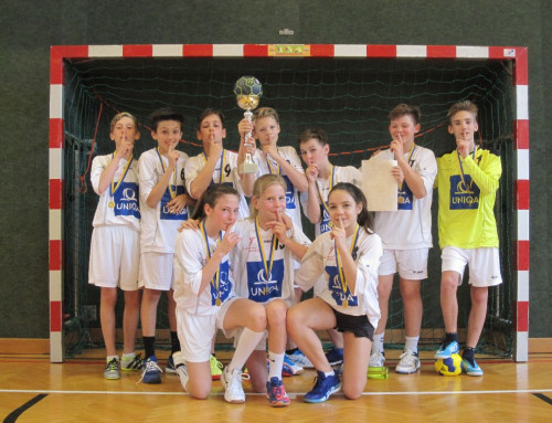 Handball Minicup mit Vereinsspielern: Landesfinale