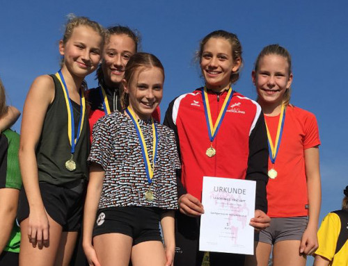 Cross Country Landesmeisterschaften 2019